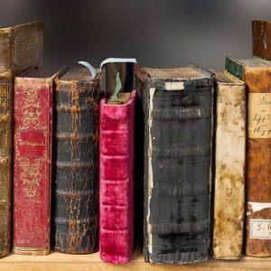 Quelles sont les fonctions majeures de la littérature?
